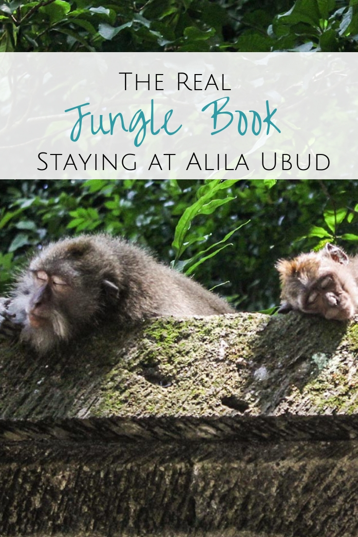 Want to experience the real-life Jungle Book? Head to the Alila Ubud, a jungle hotel in Bali for monkey business and princess & the frog moments.  #ubud #bali #indonesia Where to stay in Ubud | Ubud jungle hotel | Best jungle hotels in Bali | Where to stay in the Bali jungle | Jungle hotel in Ubud