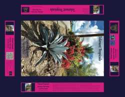 Tolerant Tropical Plants, Agave, poinsettia, palm tree, jigsaw