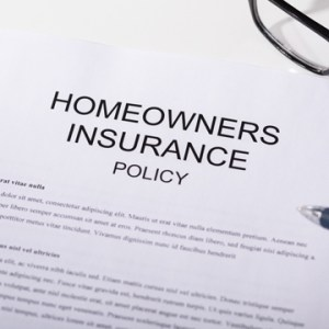 will homeowners insurance cover termite damage