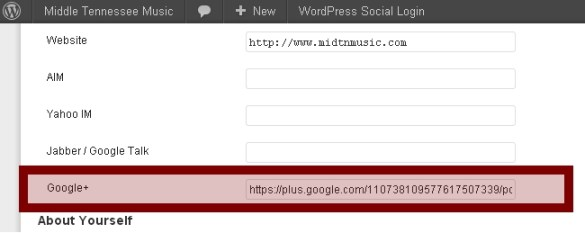 Link to Google Profile in WordPress