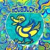 The Aquaducks