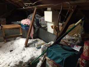 SN attic
