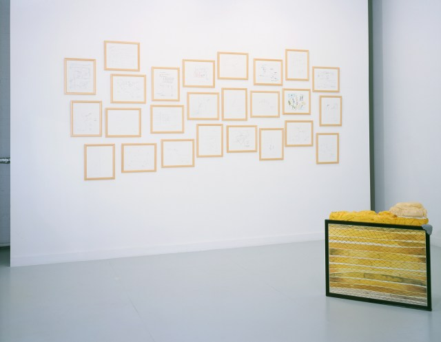 Drawn from LA (home is where the heart is), installation view. Background: Kerry Tribe, Picturing LA, 2001. Foreground: Heidi Kidon, Pleated Filter With Flaws, 2000-2001. Courtesy of Rosamund Felsen Gallery.