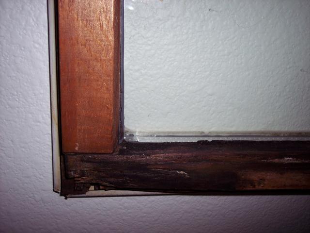 window repair new