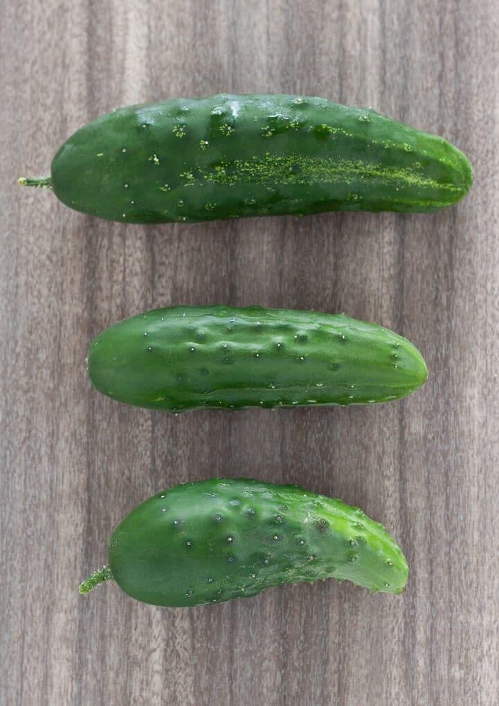 Fresh picked garden cucumbers