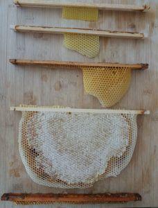 barrette warré, barrette warre, ruche warre, ruche warré