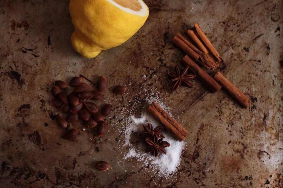 marmellata prugnette selvatiche anice stellato e cannella 2