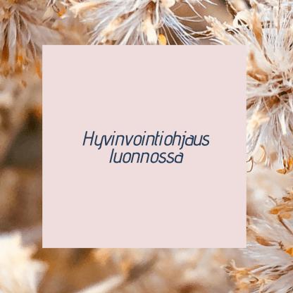 Mielimaisema | Hyvinvointiohjaus luonnossa