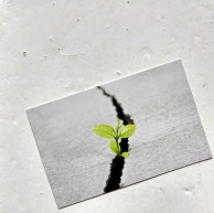 Visitekaartje   Stichting Restart after Cancer