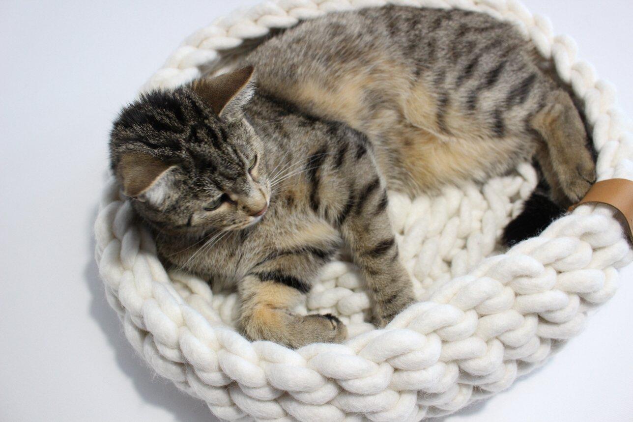 design Katzenbett