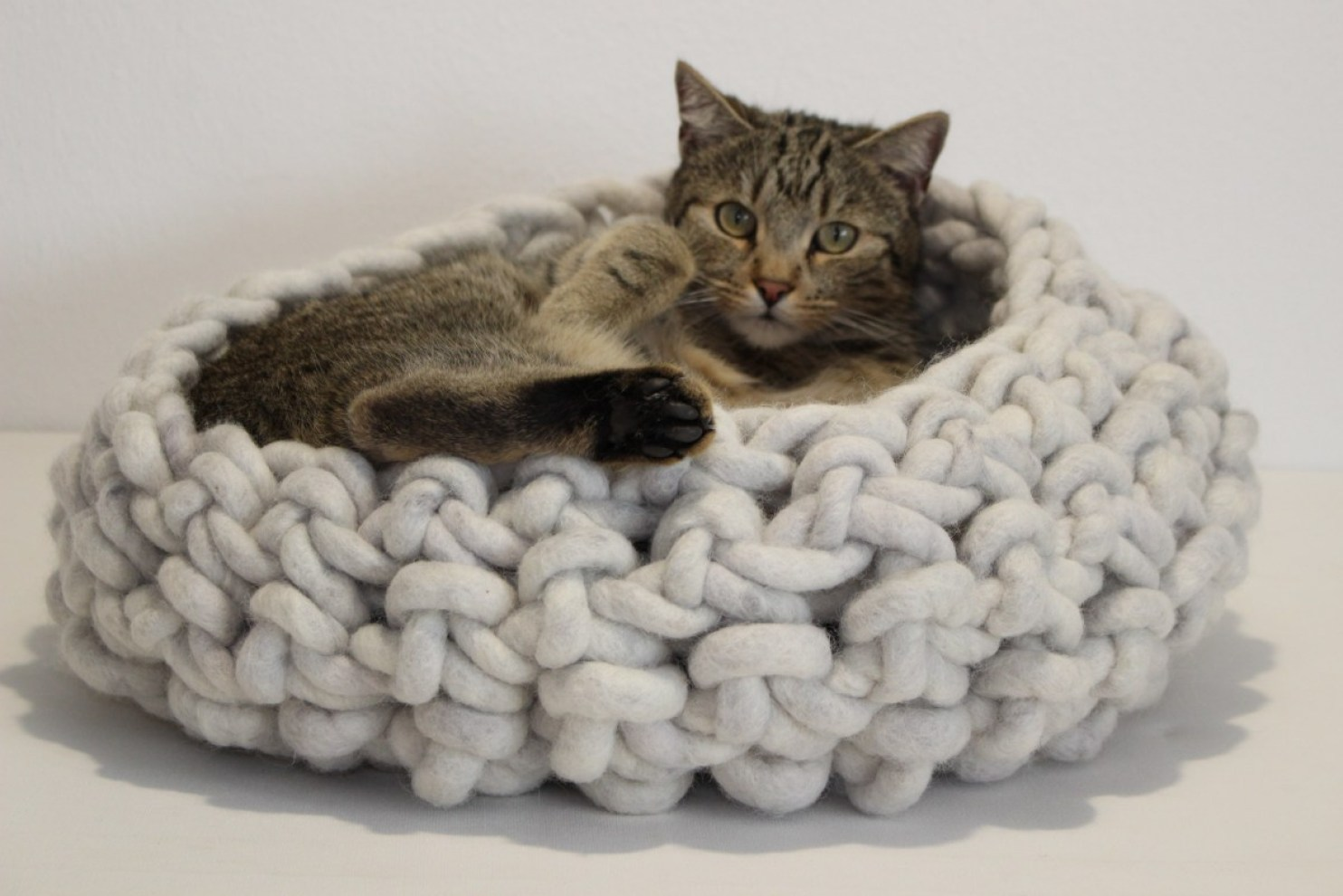 Design Katzenbett Traumwandler