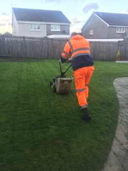 Grass Cutting Cambuslang