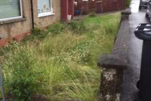 Garden Clearance Shawlands 3