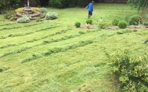Mount Vernon Grass Cutting