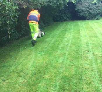 clarkston garden maintenance