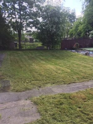 Burnside Grass Cut After