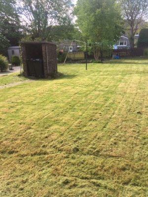 grass cutting Rutherglen