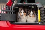 Variocage for Hatchback cars