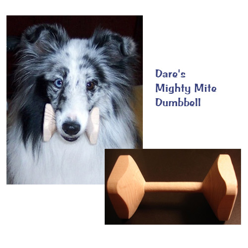 Dog Obedience Dumbbells Mighty Mite Dog Gear