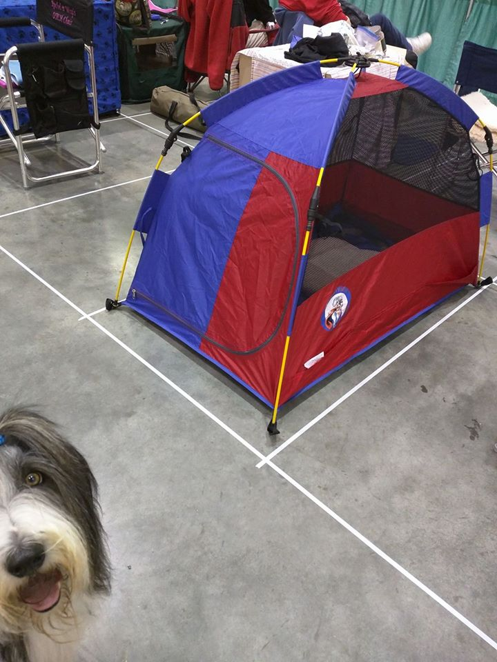 Nov 23,  · I am looking for information from anyone who has experience using the Mighty Mite dog tent on camping/backpacking trips.