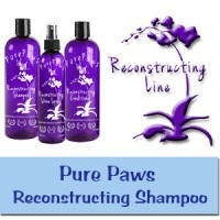 PurePawsReconstruction-New