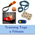 Training / Toys & Fitness