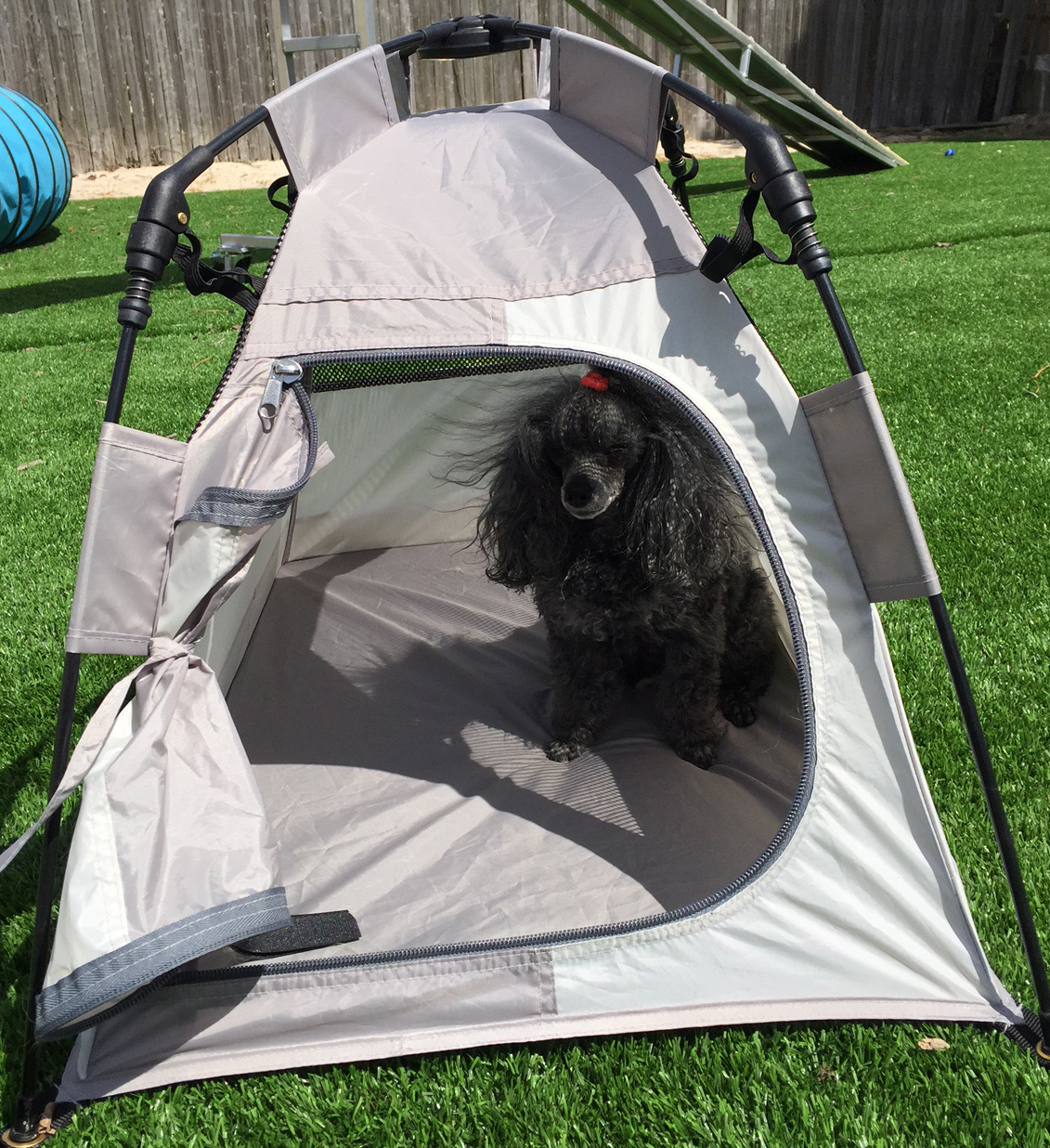 Small Soft Sided Dog Crate / Mighty Mite Petite Tents & Small Soft Sided Dog Crate