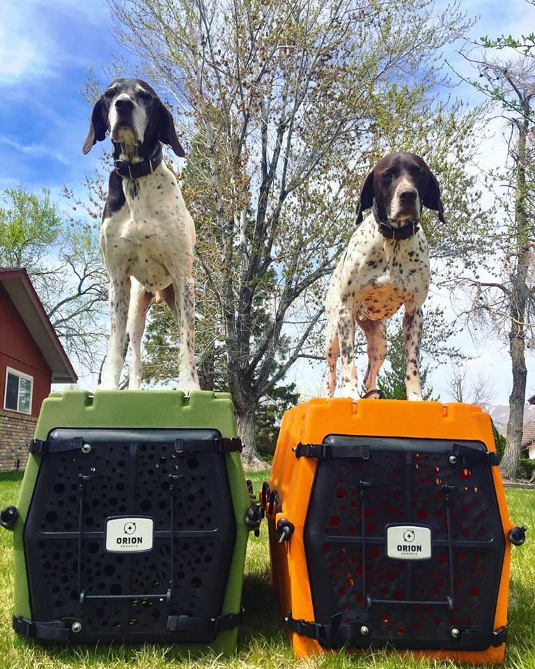 Orion Kennels - Orion Dog Crate