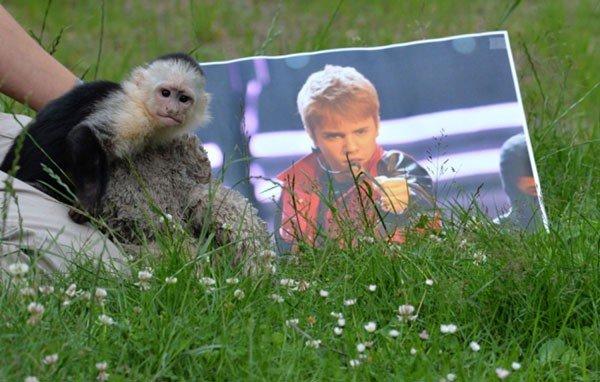 Justin Bieber perde la scimmietta Mally