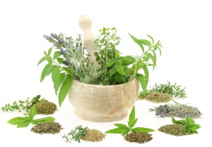 Herbal Migraine Remedies and Spices