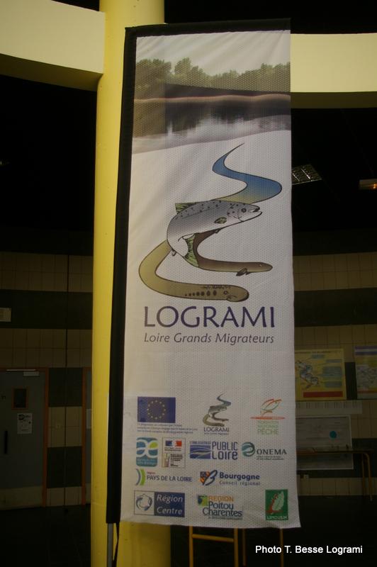 Drapeau Logrami