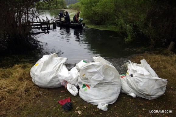 Près de 10 tonnes de cadavres de mulets ont été collectés par les agriculteurs riverain à Cantenay Epinard