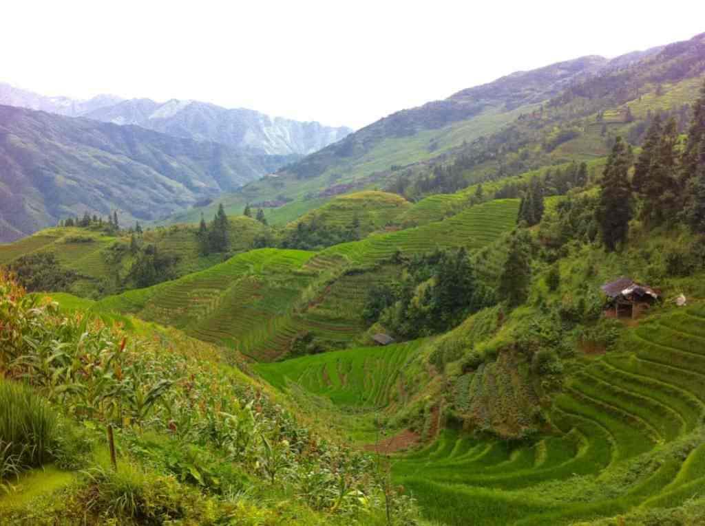Rice terraces china Longsheng Ping'an Longji