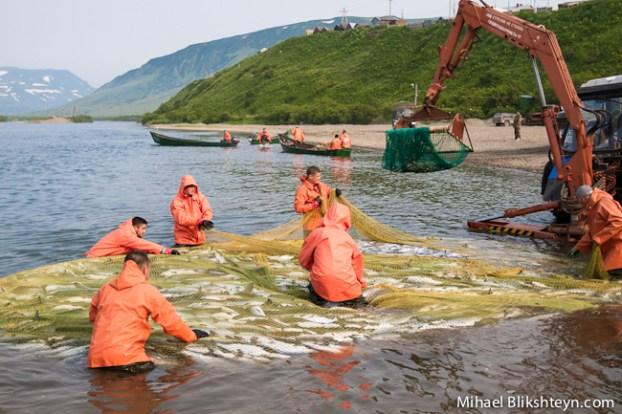Ozernaya River sockeye salmon beach seine fishery