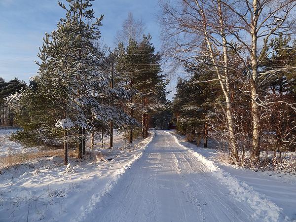 Lunta ja aurinkoa! Parissa seuraavassakin kuvassa - mutta tuo yhdistelmä on niin kaunis!
