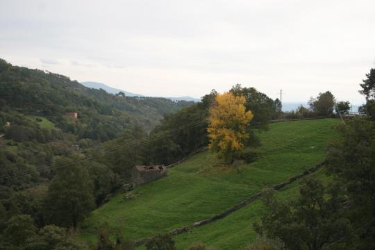 Prado de Alfonso