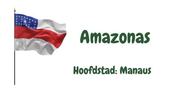 Vlag van de Braziliaanse deelstaat Amazonas met als hoofdstad Manaus
