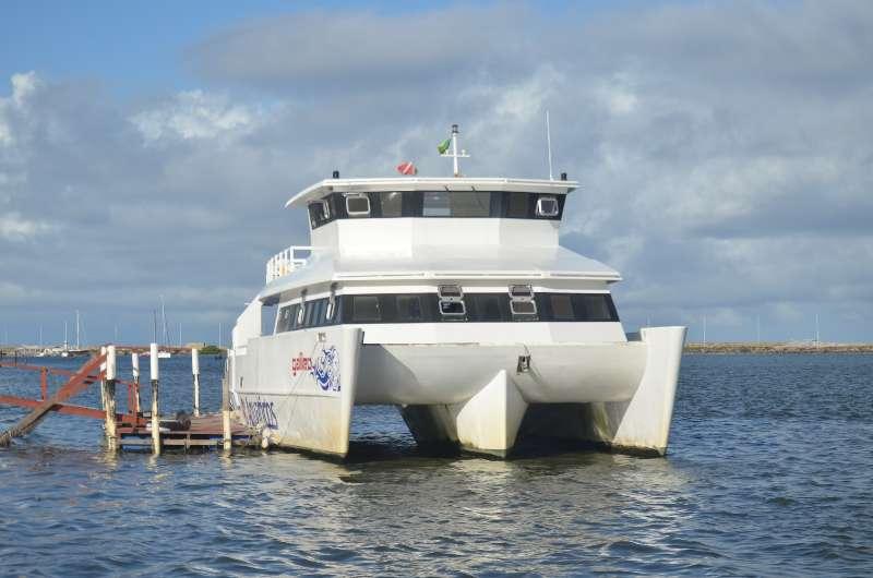 Catamaran Tours-Boottochten in de omgeving van Recife