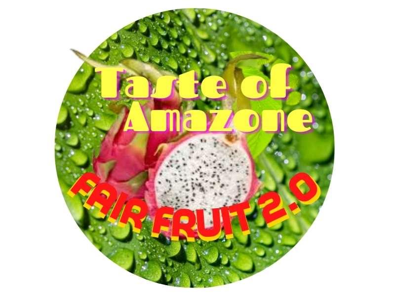 Logo Taste of Amazone