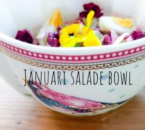 Goede start saladebowl