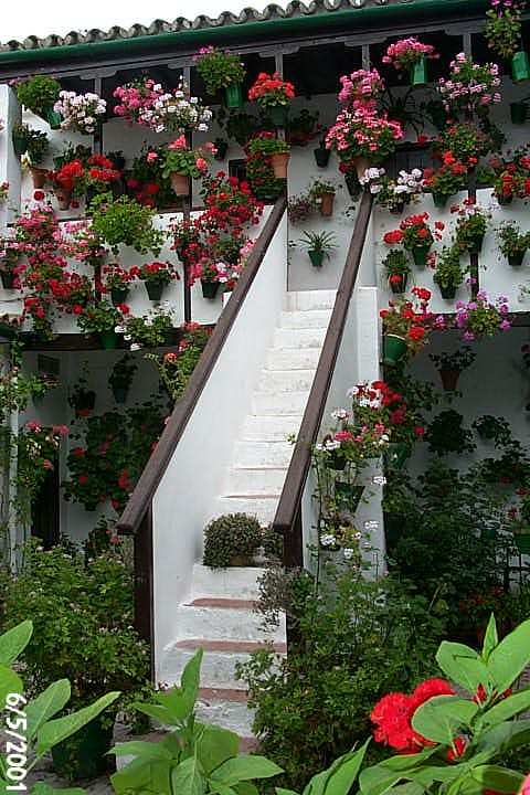 Detalle de un patio de Córdoba