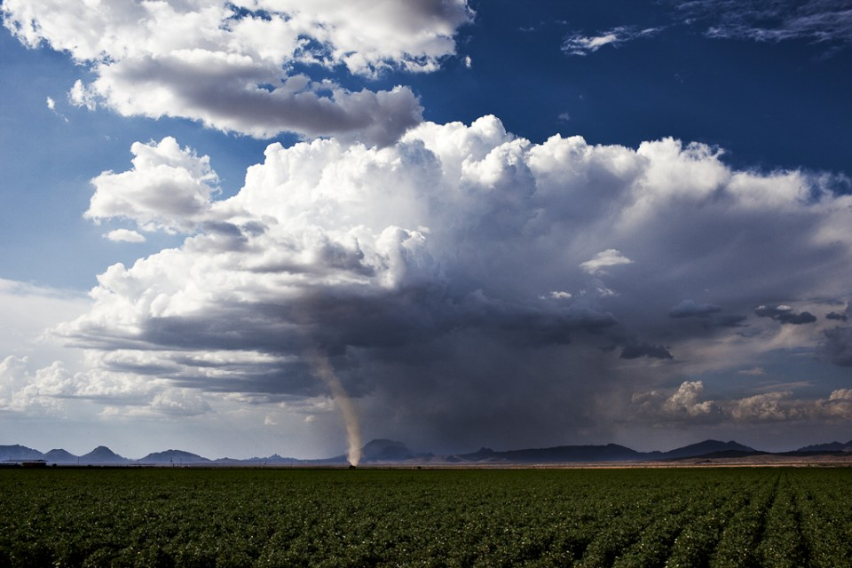 The Arizona Twister or Dust Devil