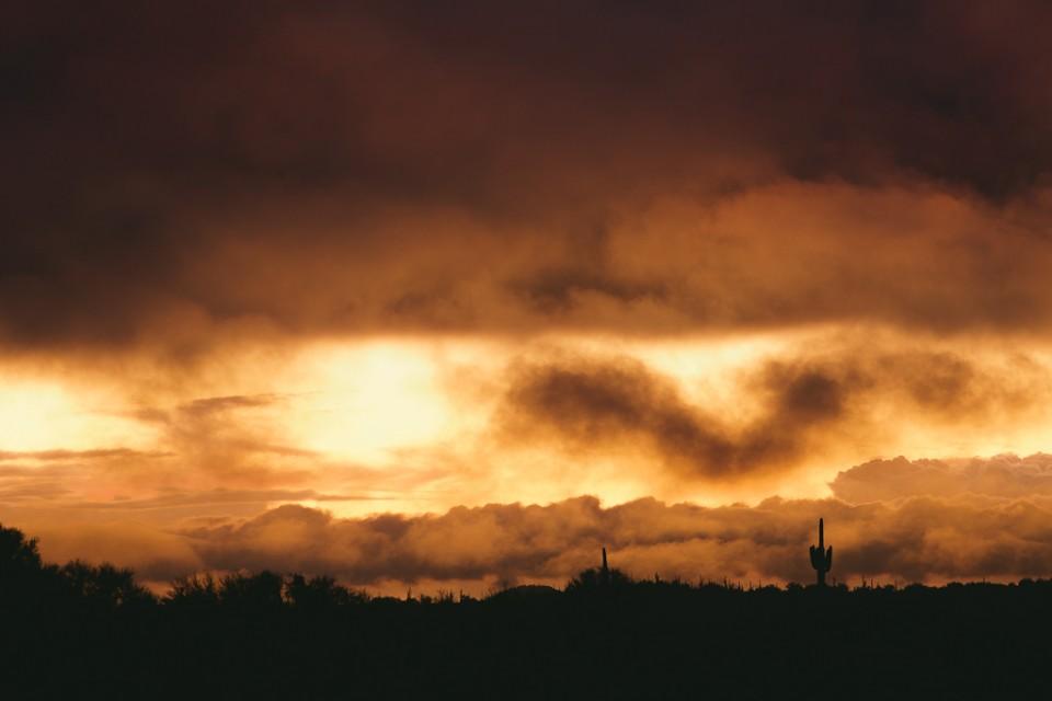 Flames on the Horizon