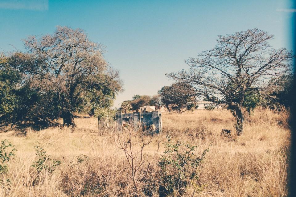 Africa-0923
