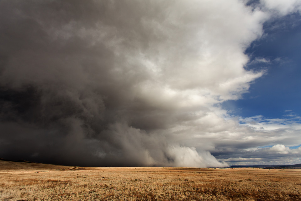 """While watching this storm roll across eastern Arizona, we dubbed it a """"snoboob"""" because it had all the appearances of a dust storm but instead it was pure white. Even the time-lapse of this makes it look like a haboob. Whatever it was...shelf cloud, gust front...it was gorgeous to watch, especially as it eventually overtook us and enveloped our area in fog and hail."""