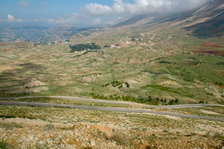 The tiny patch of the 'Cedars of Lebanon', viewed from the road going over the Lebanon Mountains.