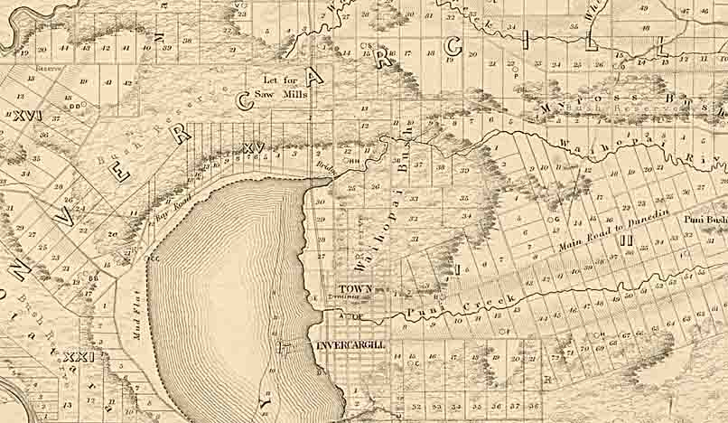 A section of an 1865 cadastral map showing forest/bush patches in the area around Invercargill (Sir George Grey Special Collections, Auckland Libraries, NZ Map 3842)
