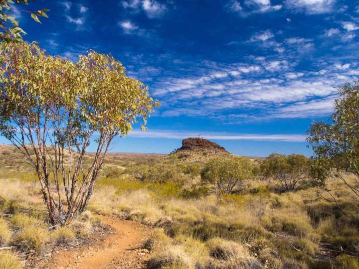 The Larapinta Trail over level country out of Ormiston.