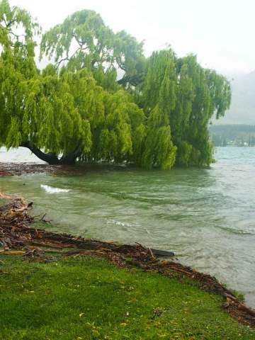 Lake Wanaka New Zealand flooding