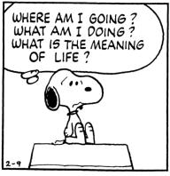 meaningoflife